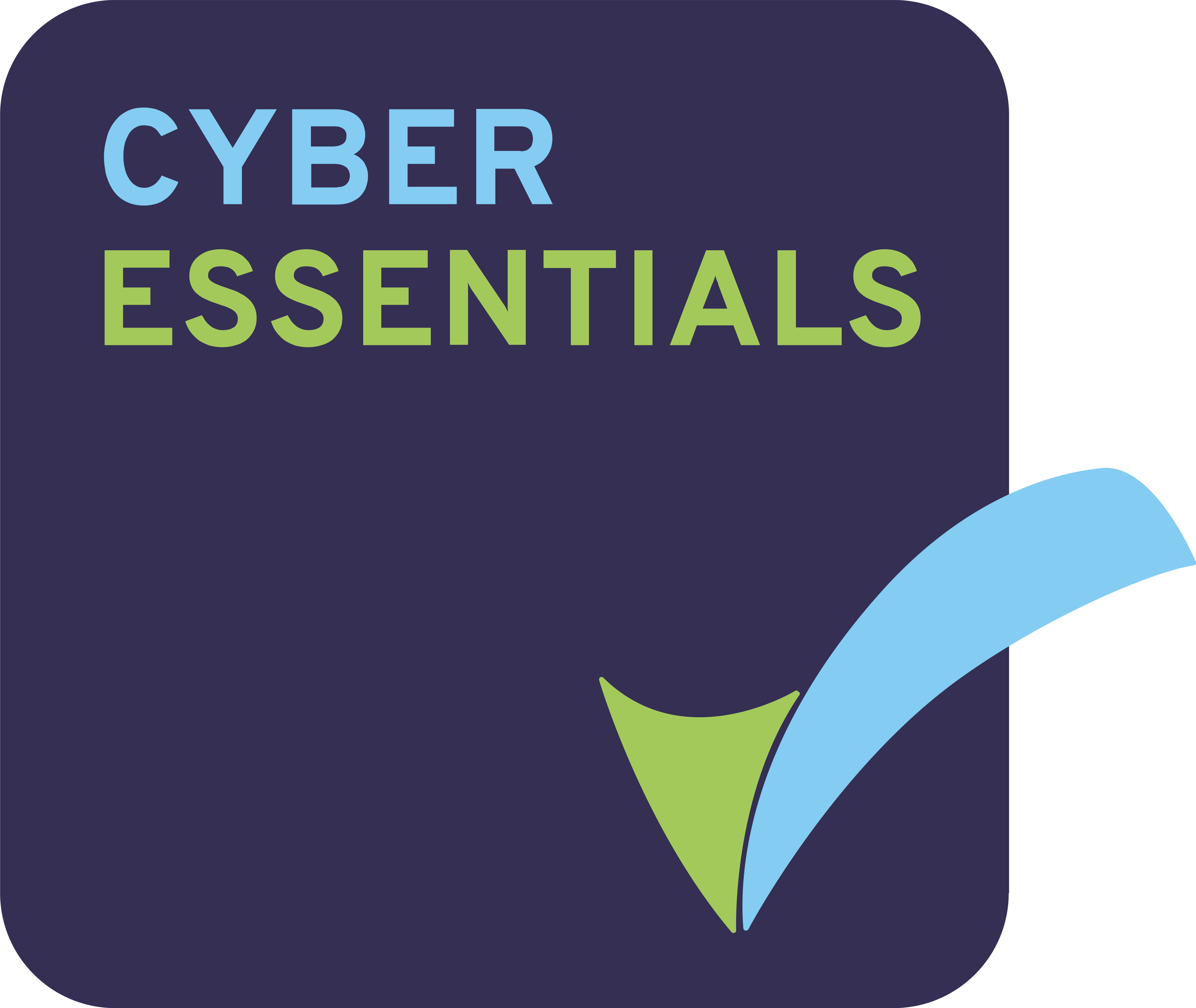 Amita Cyber Essentials accreditation